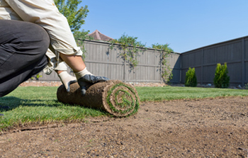 Sod farm grass getting unrolled in a back yard