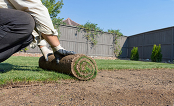 Sod rolls being installed in a backyard